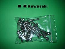 Kawasaki KH KH250 350 400 Engine SS Stainless Allen Screw Kit *UK FREEPOST*