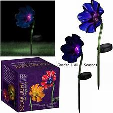 PURPLE Mini POPPY Solar Light Garden Stake Creekwood Regal Art & Gift Boxed