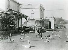 TIPPI HEDREN ROD TAYLOR THE BIRDS 1963 ALFRED HITCHCOCK VINTAGE PHOTO N°5