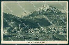 Trento Fiera di Primiero cartolina VK0584