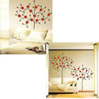 Gerbera Tree ★Home Deco Mural Art Wall Stickers PS58011