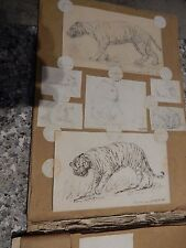 Kensington zoo paintings and drawings  1900s small album to restore