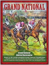 Grand National, Racecourse, Horse Racing, Jockey Mini Metal/Steel Sign, Plaque