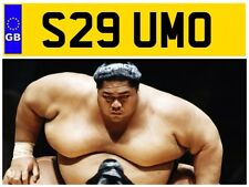 S29 UMO SUMO BOUNCY CASTLE INFLATABLE HIRE COMPANY FAT FATS PRIVATE NUMBER PLATE
