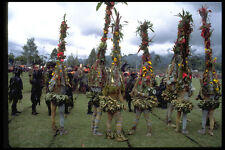 381067 Minj Sing sing Plant Costume People New Guinea A4 Photo Print