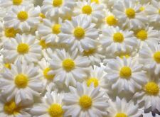 12 Edible White & Yellow Daisies Flowers Birthday Party Cake Topper Decorations