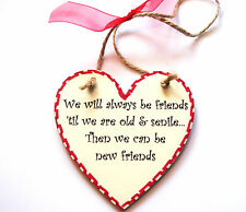 Gift For Friend - WE WILL ALWAYS BE FRIENDS 'TIL WE ARE OLD & SENILE - Plaque