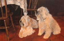 """SOFT COATED WHEATEN TERRIER SCWT DOG LIMITED EDITION PRINT - """"Dinner Guests"""""""
