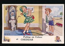 Somerset CHEDDAR Novelty Pocket Children Dog  c1950s? PPC by Valentine