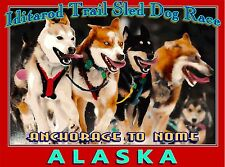 Iditarod Trail Dog Sled Race Alaska United States Travel Advertisement Poster