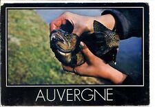 CP 43 HAUTE-LOIRE - L'Auvergne - La Truite...la reine de nos montagnes