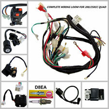 Full Wiring Harness Loom 150/200/250/300cc ATV Quad Buggy Electric Start Engines