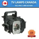 Epson ELPLP49 | V13H010L49 Projector Lamp with Housing