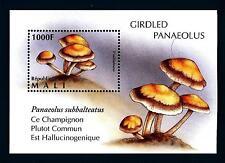 MALI - BF - 1996 - Funghi - Panaeolus subbalteatus - Mushrooms - Champignos