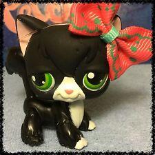 Littlest Pet Shop RARE BLACK & WHITE TUXEDO ANGORA CAT GREEN EYES #55 FLAWED