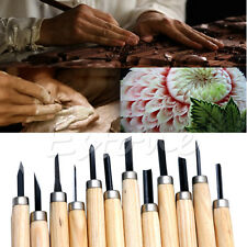 12pc Professional Wood Carving Chisel Couteau Tool Set Gouges du Bois