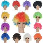 Afro Curly Clown Party 70s Disco Wig Wigs Unisex Football Fan Party Costume
