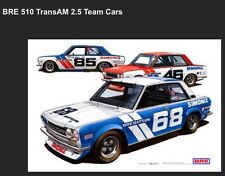 BRE Datsun 510 Trans-Am 2.5 Team Cars Car Poster New! Own It!