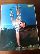 Q63 Poster Skate Jeff Grosso 40 x 55 cm.