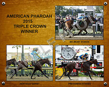 NEW AMERICAN PHAROAH 2015 TRIPLE CROWN WINNER 11 X 14 PHOTO COLLAGE #2