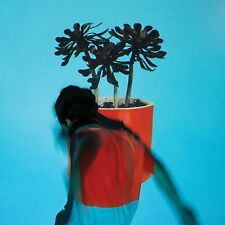 Local Natives SUNLIT YOUTH +MP3s & 12 Art Prints LIMITED New Clear Vinyl LP