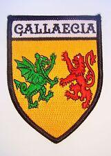 Parche Gallaecia - Mendo Suevo - Swabian Patch - Armas de la Galicia Sueva