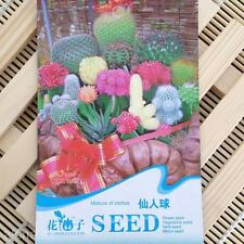 DIY Garden Mixture of Cactus Seeds Bonsai Cactaceae Succulent Plants Yard Artist