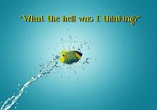 MAGNET Funny Humor Fridge Fish Jumps Water What The Hell Was I Thinking