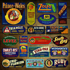 18 Different Vintage FLORIDA FRUIT & VEGETABLE CRATE LABELS: Orig Unused Lot