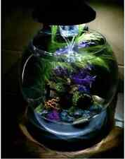 1.8 Gallon Filter Aquarium, Fish Tank, Fish Bowl With LED Lighting
