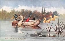 """For Rain or Sunshine, Ducks, Birds """"Farm Friends"""" B. Cobbs"""