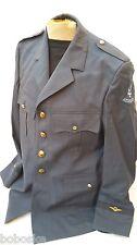 Veste homme du rang Armée de l'Air Hollandaise-Taille L (mensuration ci-dessous)