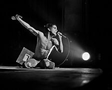 Iggy Pop Fantastic Spotlight BW 10x8 Photo