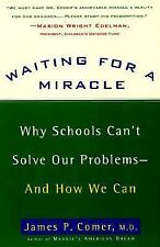 Waiting for a Miracle: Why Schools Can't Solve Our Problems-- and How We Can