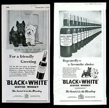 SCOTTISH TERRIER WEST HIGHLAND WHITE Westie Scottie DOG Black & White Whisky Ads