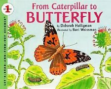 From Caterpillar to Butterfly (Let's-Read-and-Find-Out Science 1)-ExLibrary