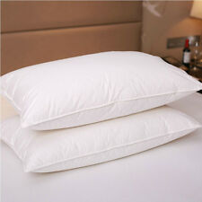 Pure Canadian Goose Down Filled Pillow,1800TC White 100% Egyptian Cotton Cover