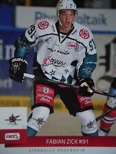 Fabian Zick Starbulls Rosenheim 2014-15 DEL2-043