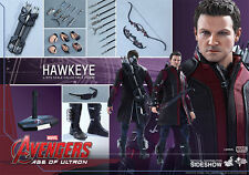HOT TOYS AVENGERS AOU AGE OF ULTRON HAWKEYE 1:6 FIGURE ~Sealed in Brown Box~