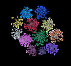 12-Color Nail Art Tips Dry Dried Flowers Acrylic UV Gel Decorations DIY Great