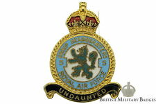 Queens Crown: Royal Air Force 5 Group Headquarters Squadron Unit RAF Lapel Badge