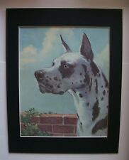 Great Dane Dog Print Wesley Dennis M Henry Majestic 11x14 Bookplate 1955 Matted