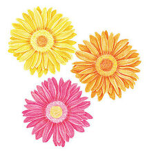 Daisy Flowers Yellow Gold Pink Gerber Daisies 25 Wallies Decals Stickers Floral