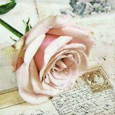 4x Single Table Party Paper Napkins for Decoupage Craft Vintage Postcard  Rose