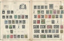 India & States Collection 1855 to 1993 on Scott International Pages, About 60 Pg