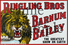 RINGLING BROS CIRCUS LION BUILDING SIGN DECAL 3X2  MORE SIZES AVAIL