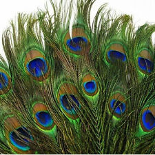 Lots Real Elegant Natural Peacock Tail Eyes Feathers 100pcs  23-30cm/about 8-12