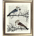 ART PRINT ON ORIGINAL ANTIQUE BOOK PAGE Bird Vintage Picture Wall Shabby Chic
