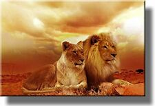 African Lion and Lioness Picture on Stretched Canvas Wall Art Décor Framed Re...