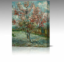 """Vincent Van Gogh Pink Peach Tree Large 16x12"""" Framed Canvas Art Picture Print"""